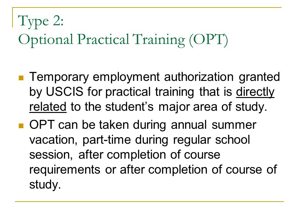 Type 2: Optional Practical Training (OPT)