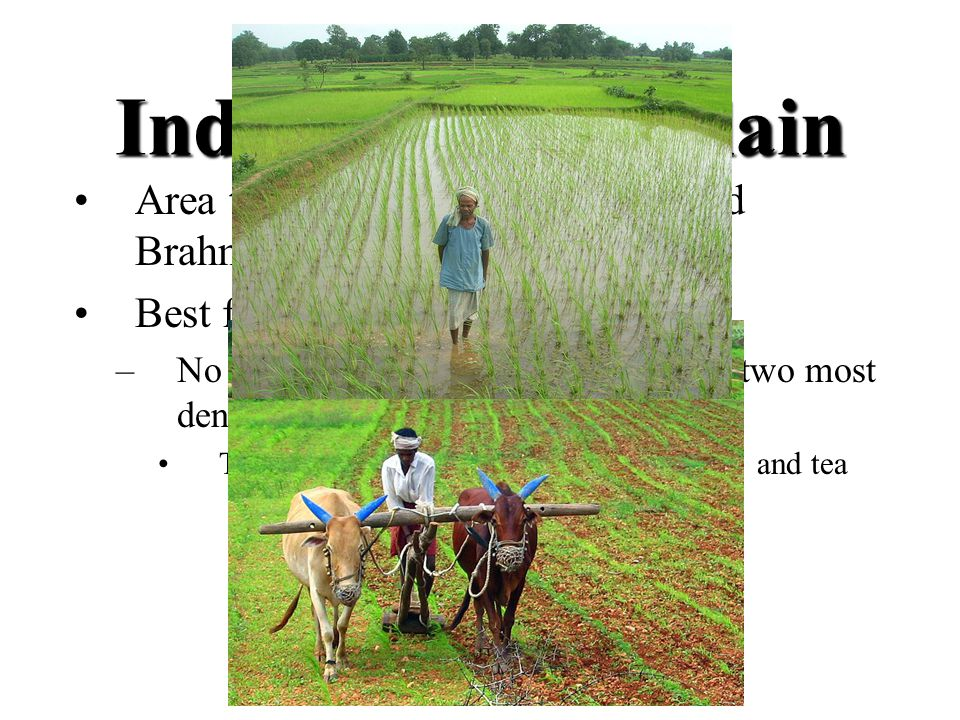 Indo- Gangetic plain Area that surrounds the Ganges and Brahmaputra rivers. Best farmland in India.