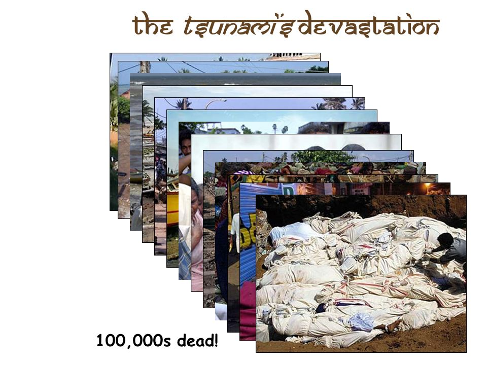 the Tsunami's Devastation