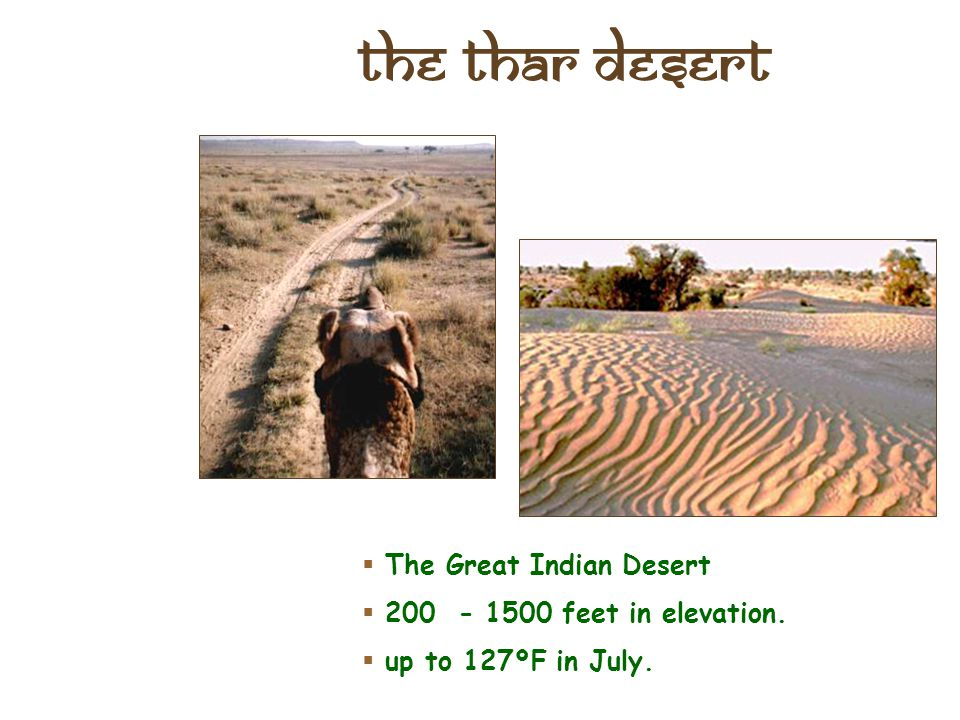 The Thar Desert The Great Indian Desert 200 - 1500 feet in elevation.