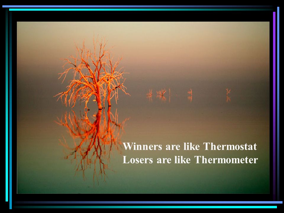 Winners are like Thermostat