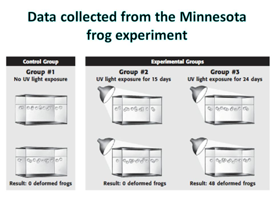 Data collected from the Minnesota frog experiment