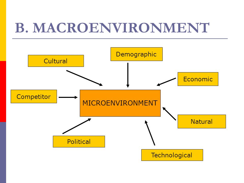 B. MACROENVIRONMENT MICROENVIRONMENT Demographic Cultural Economic