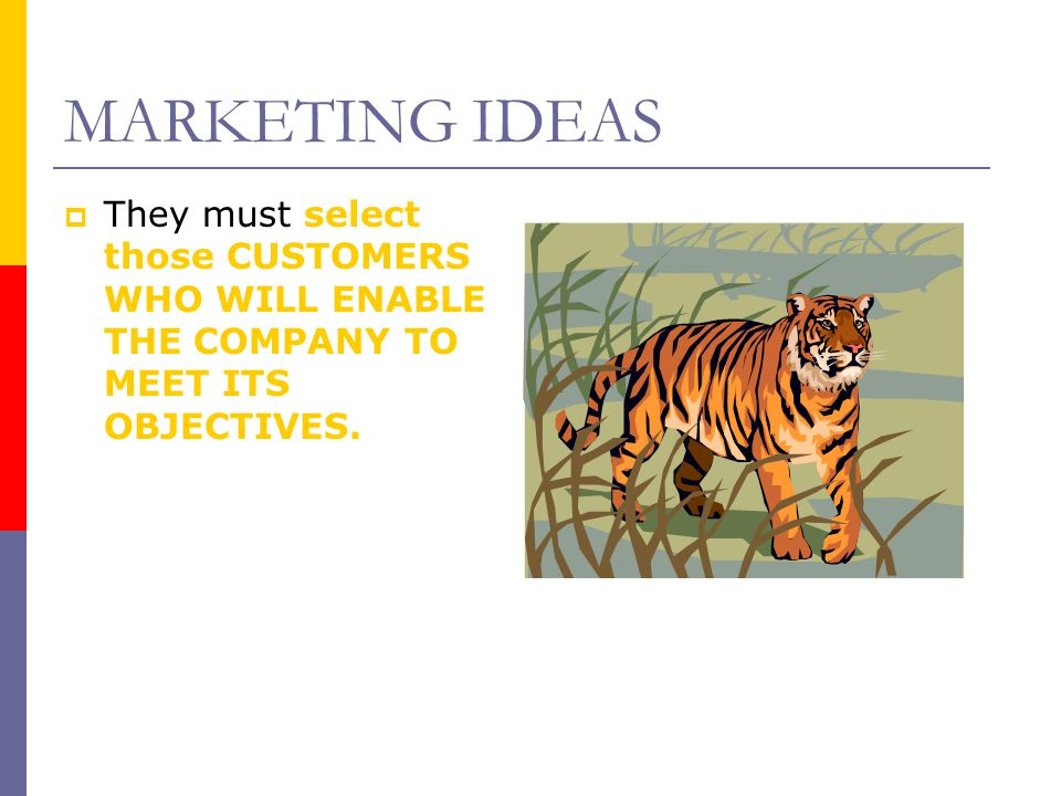 MARKETING IDEAS They must select those CUSTOMERS WHO WILL ENABLE THE COMPANY TO MEET ITS OBJECTIVES.