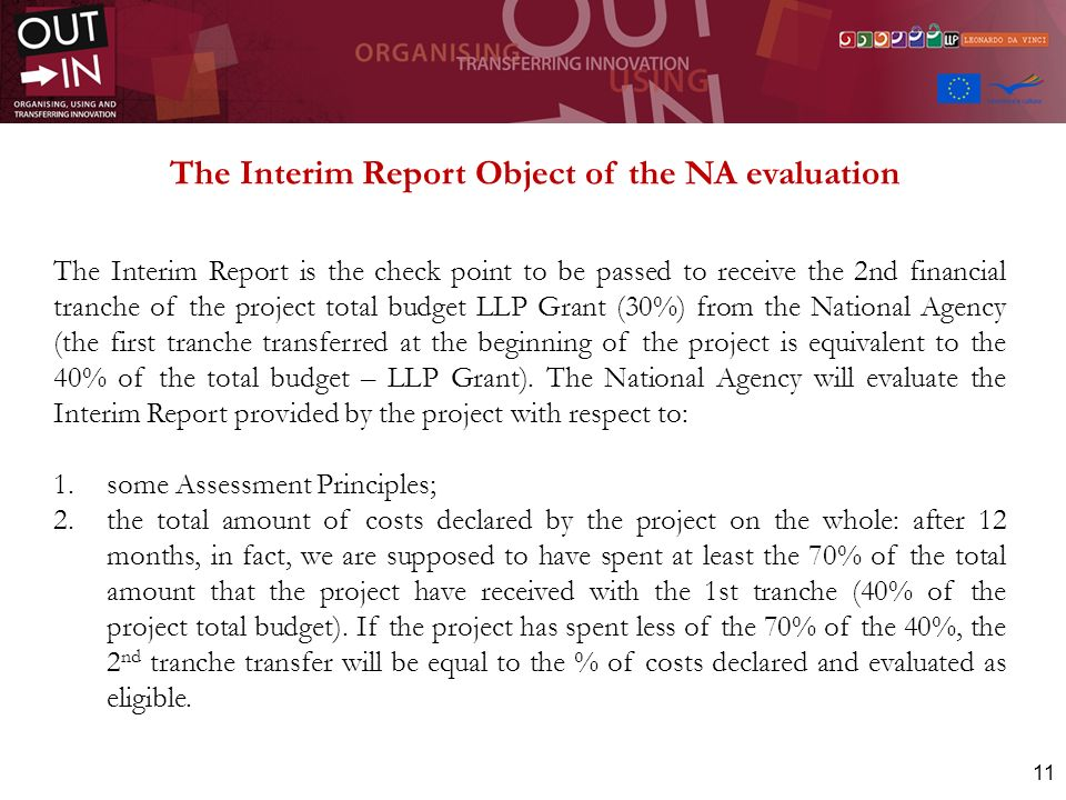 The Interim Report Object of the NA evaluation