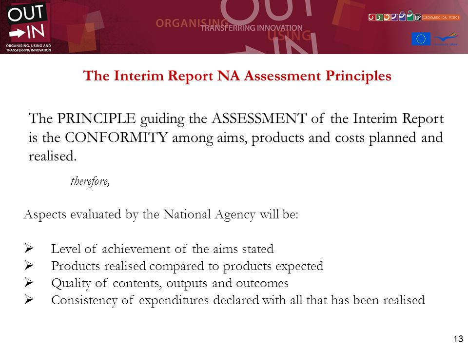 The Interim Report NA Assessment Principles