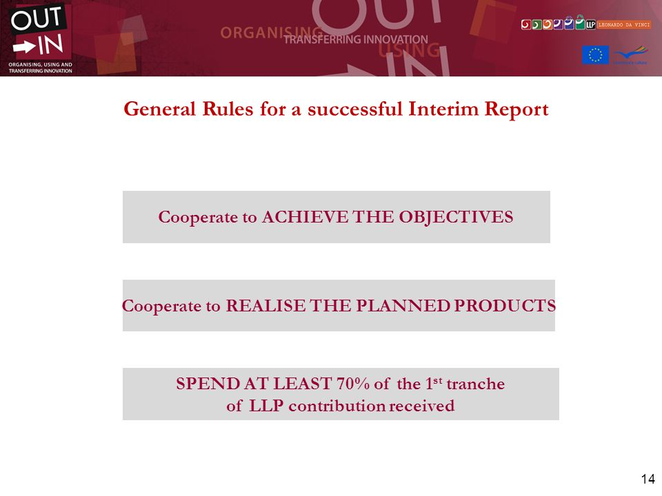 General Rules for a successful Interim Report