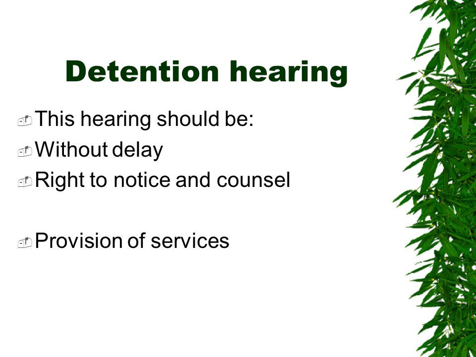 Detention hearing This hearing should be: Without delay