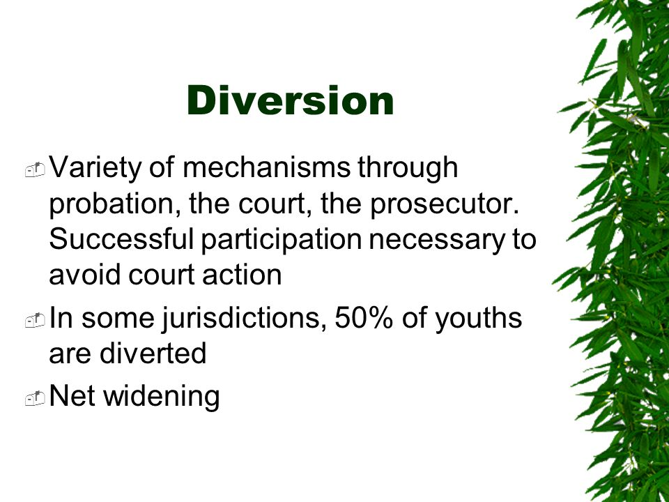 Diversion Variety of mechanisms through probation, the court, the prosecutor. Successful participation necessary to avoid court action.