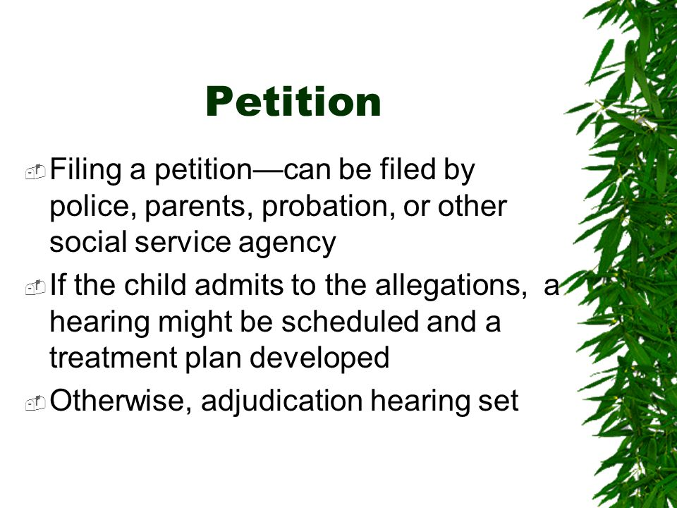 Petition Filing a petition—can be filed by police, parents, probation, or other social service agency.