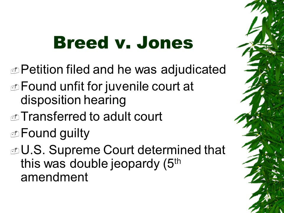 Breed v. Jones Petition filed and he was adjudicated