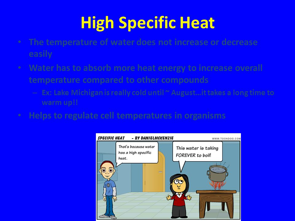 High Specific Heat The temperature of water does not increase or decrease easily.