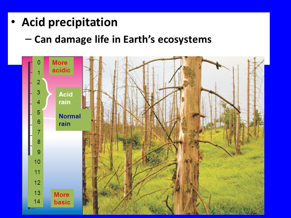 Acid precipitation Can damage life in Earth's ecosystems More acidic