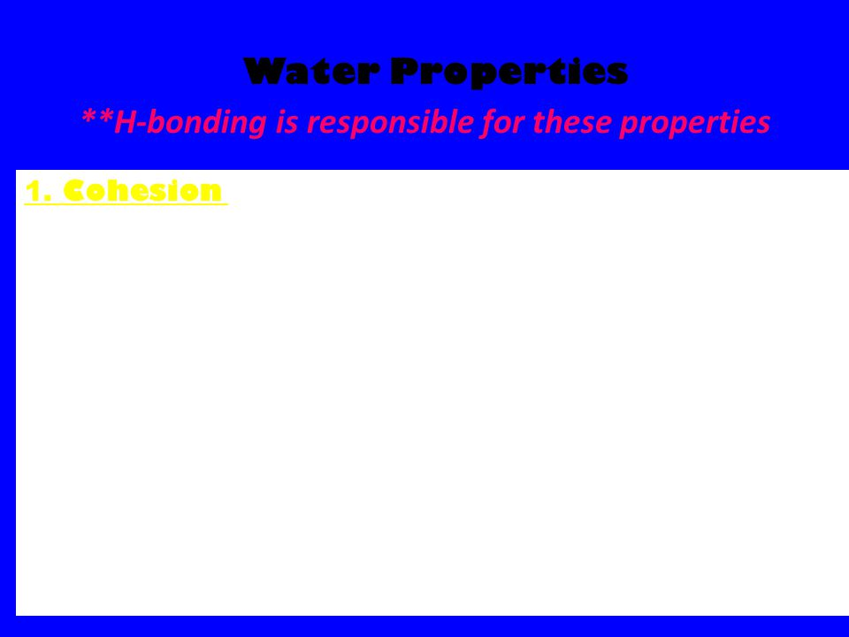 Water Properties **H-bonding is responsible for these properties