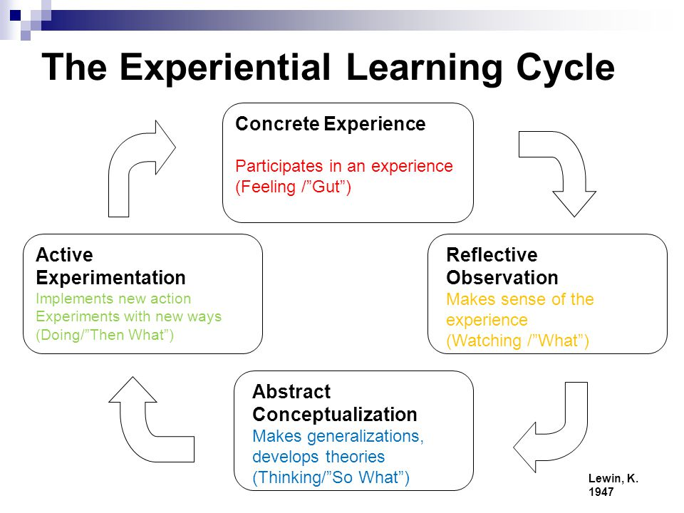 Learning & experimentation