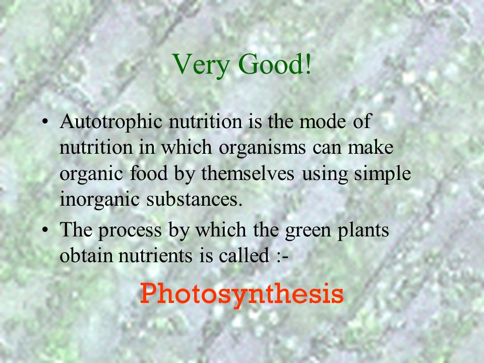 Very Good! Photosynthesis
