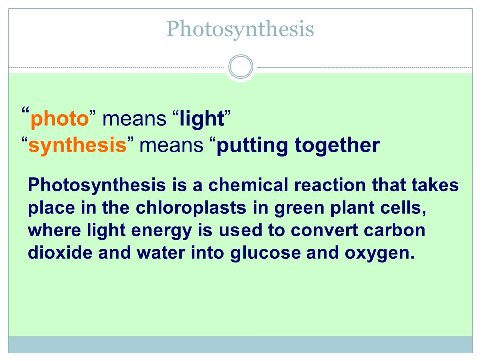 photo means light Photosynthesis
