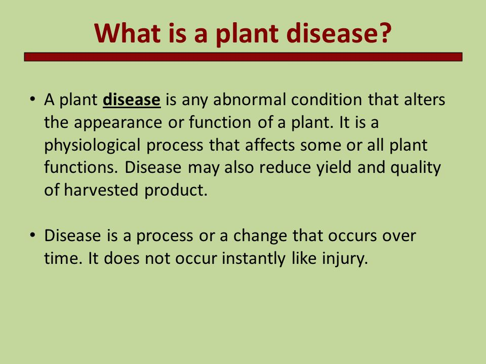 Introduction to plant pathology ppt video online download.