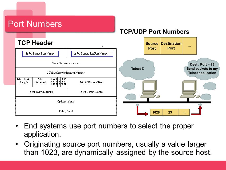 Port Numbers TCP Header. End systems use port numbers to select the proper application.