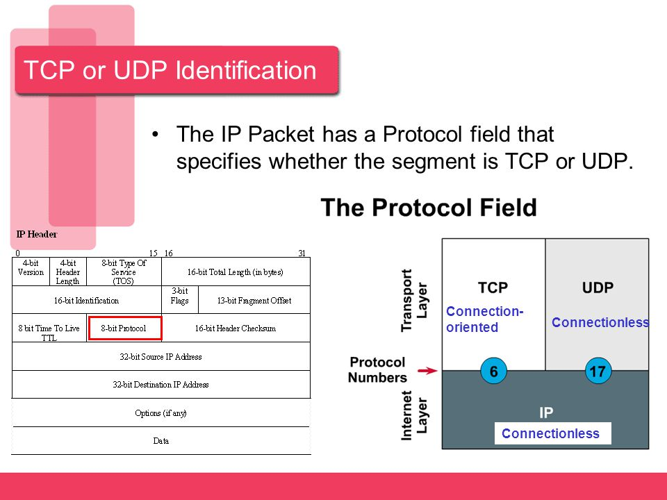 TCP or UDP Identification