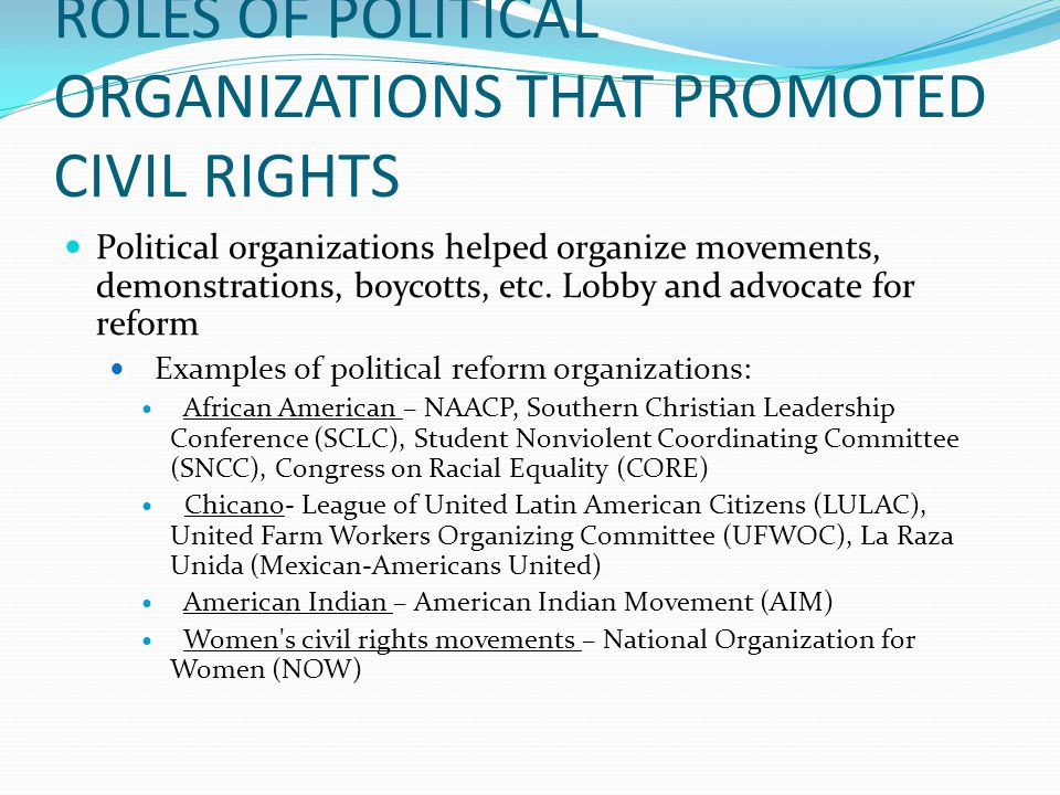 ROLES OF POLITICAL ORGANIZATIONS THAT PROMOTED CIVIL RIGHTS