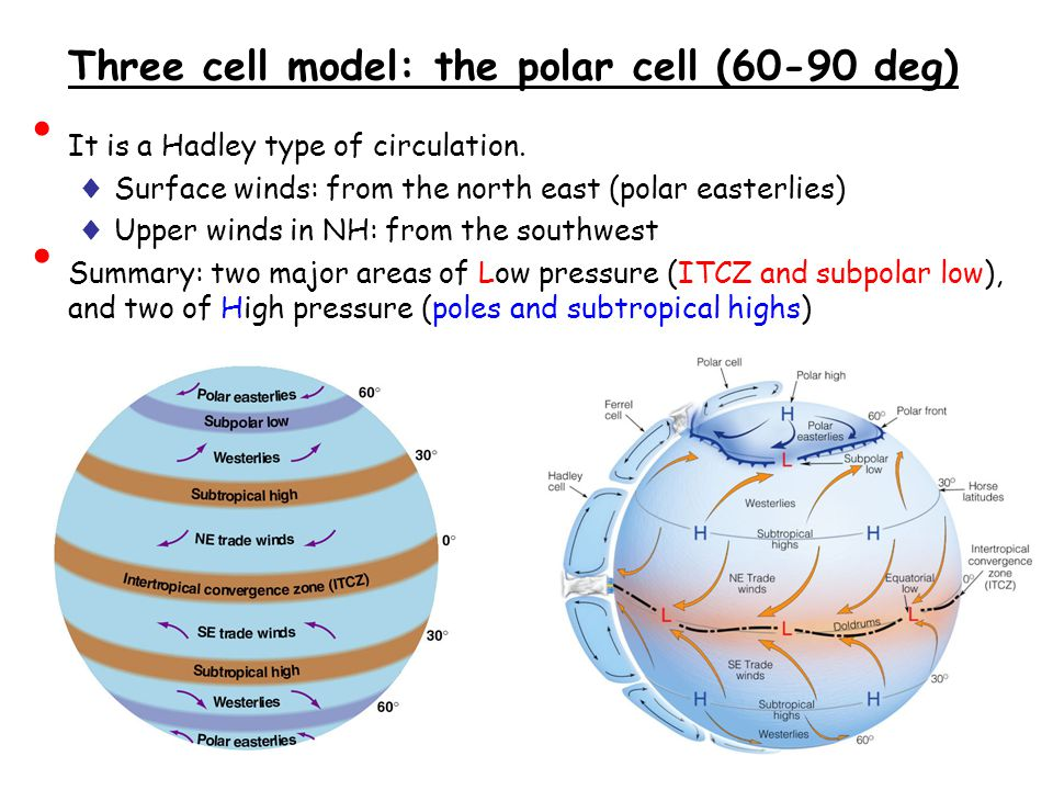 Three cell model: the polar cell (60-90 deg)