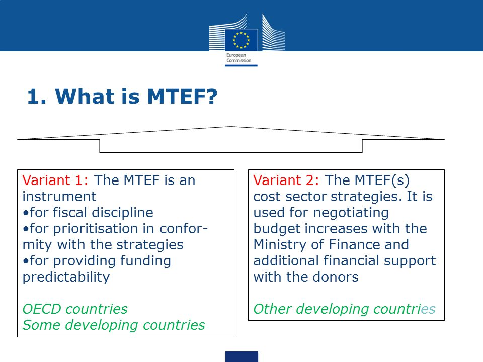 1. What is MTEF Variant 1: The MTEF is an instrument