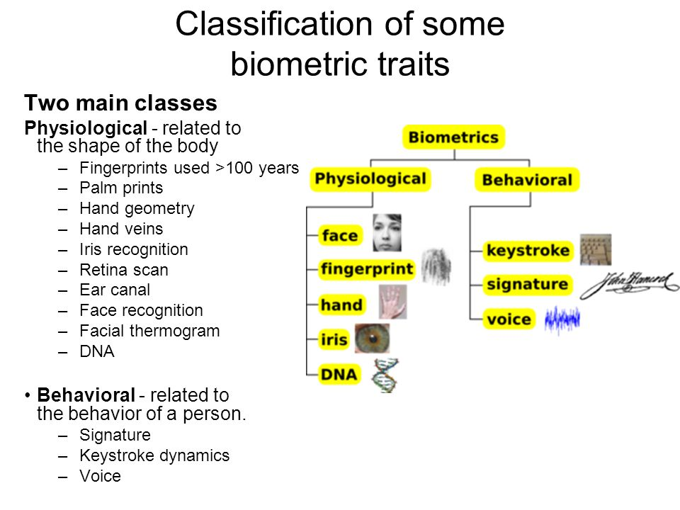 Classification of some biometric traits