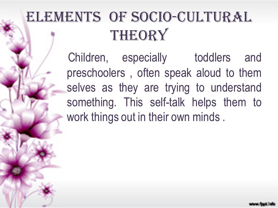 Elements of Socio-cultural Theory