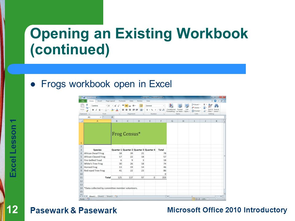 Opening an Existing Workbook (continued)