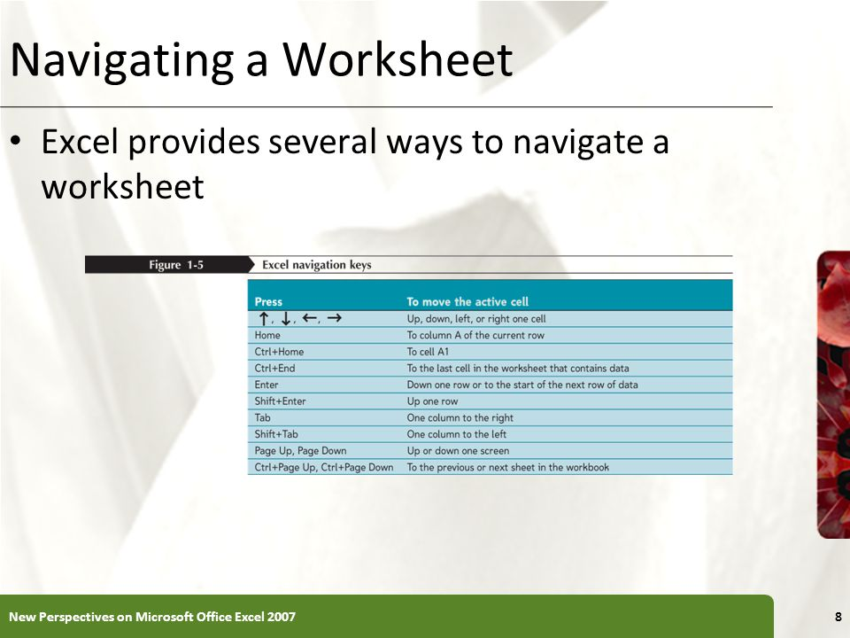 Navigating a Worksheet