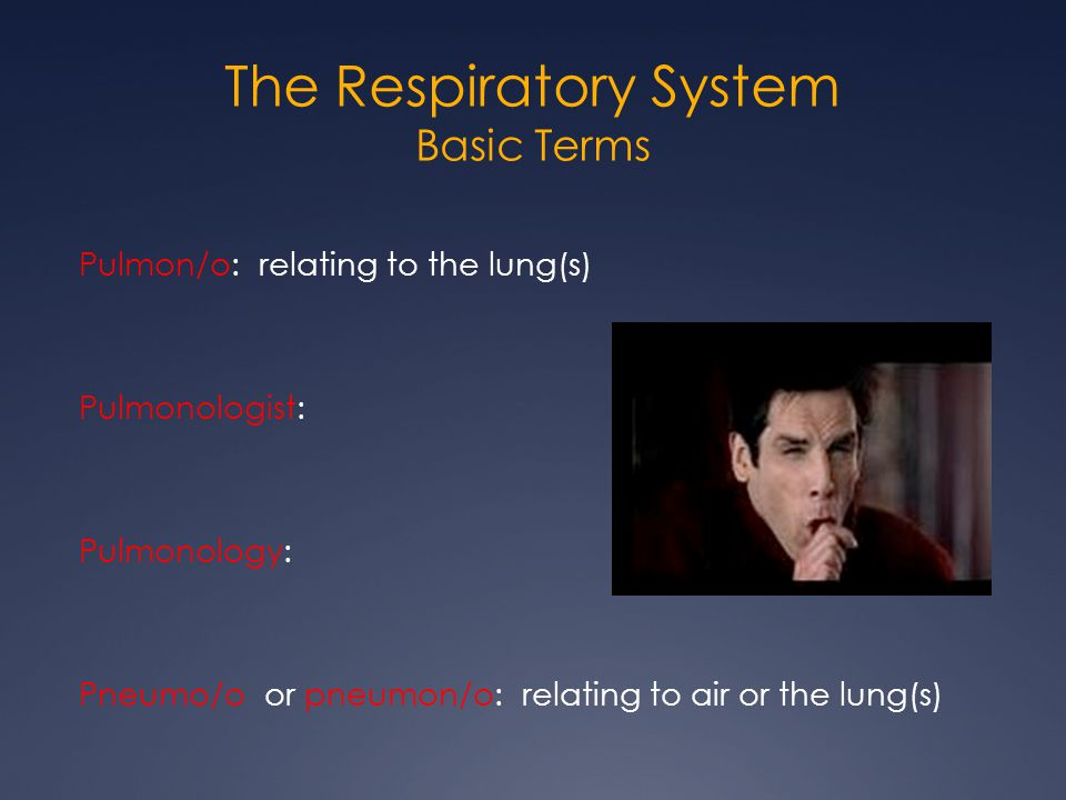 The Respiratory System Basic Terms