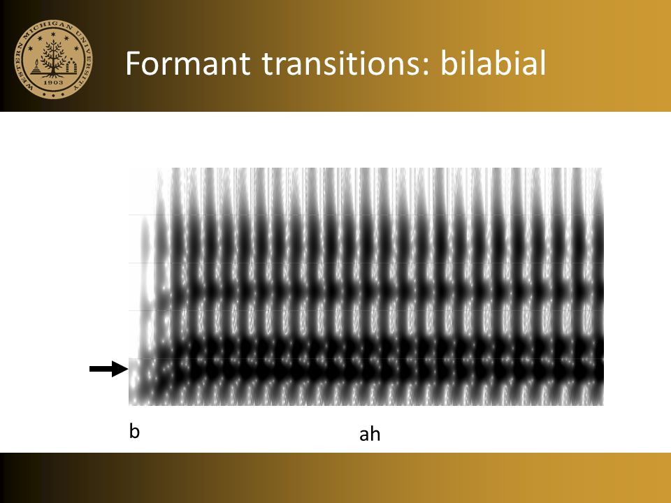 Formant transitions: bilabial