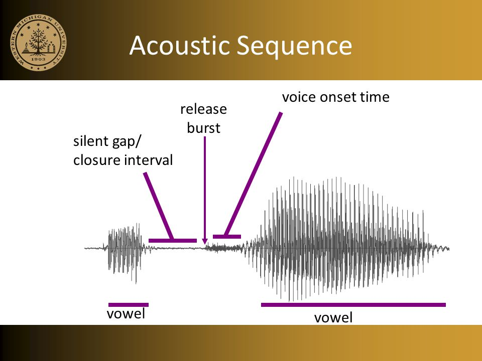 Acoustic Sequence voice onset time release burst silent gap/