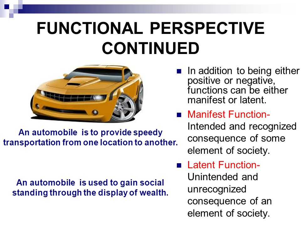 FUNCTIONAL PERSPECTIVE CONTINUED