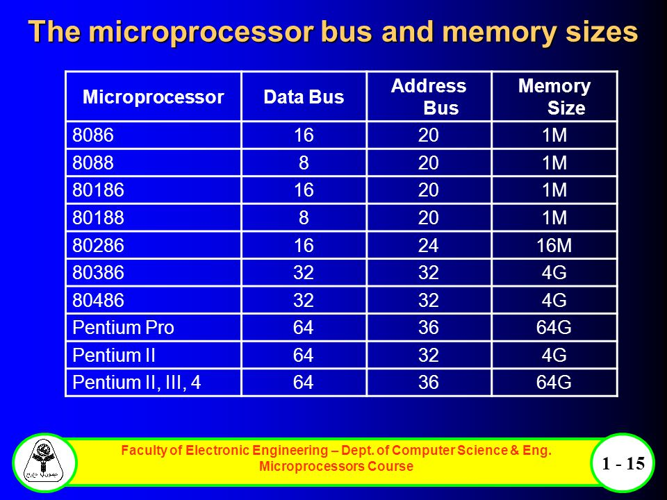 The microprocessor bus and memory sizes