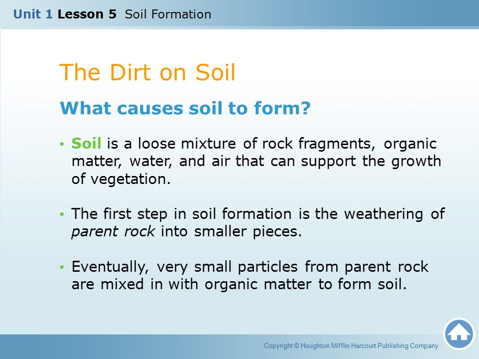 The Dirt on Soil What causes soil to form