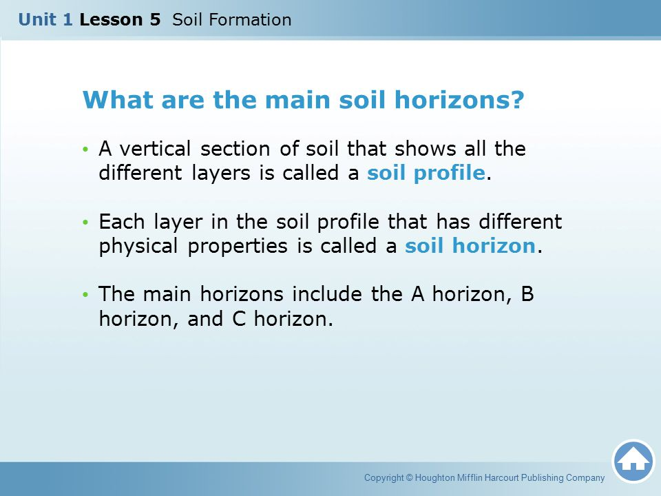 What are the main soil horizons