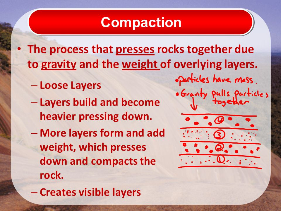 Compaction The process that presses rocks together due to gravity and the weight of overlying layers.