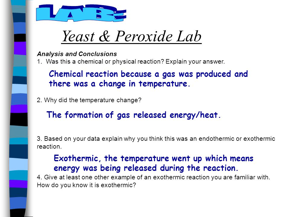 Key Question What Is The Difference Between Exothermic And