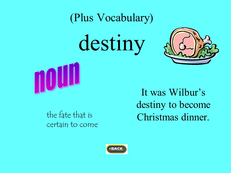 (Plus Vocabulary) destiny