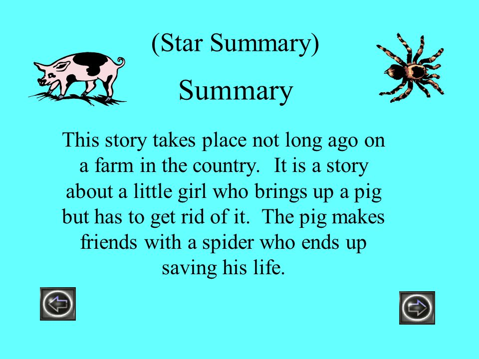 (Star Summary) Summary