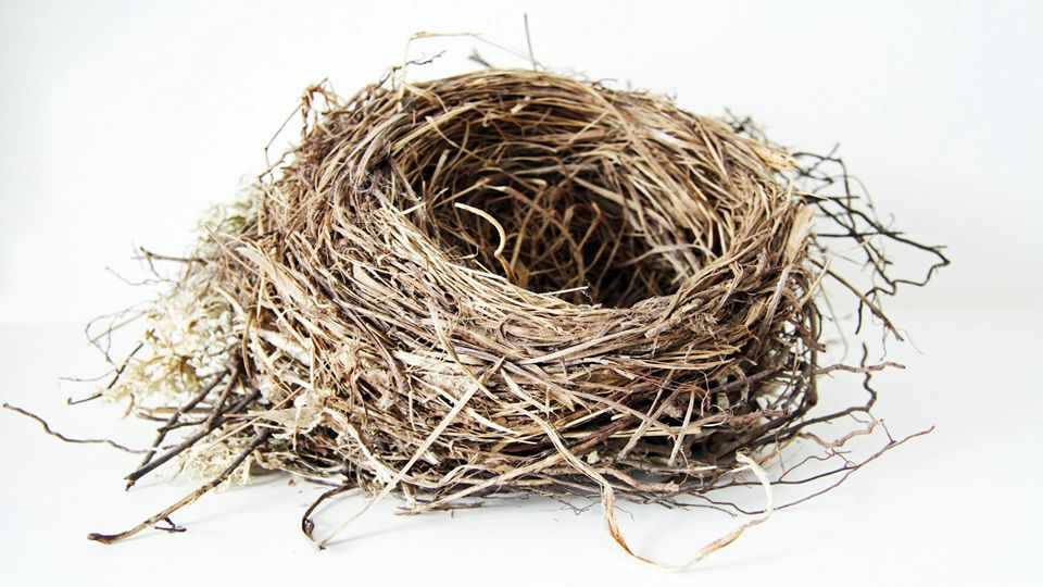 It is almost as if a nest needs to be prepared in our hearts to receive this revelation.