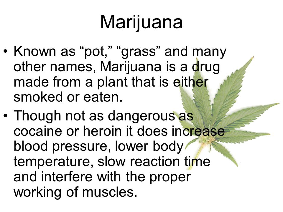 Marijuana Known as pot, grass and many other names, Marijuana is a drug made from a plant that is either smoked or eaten.