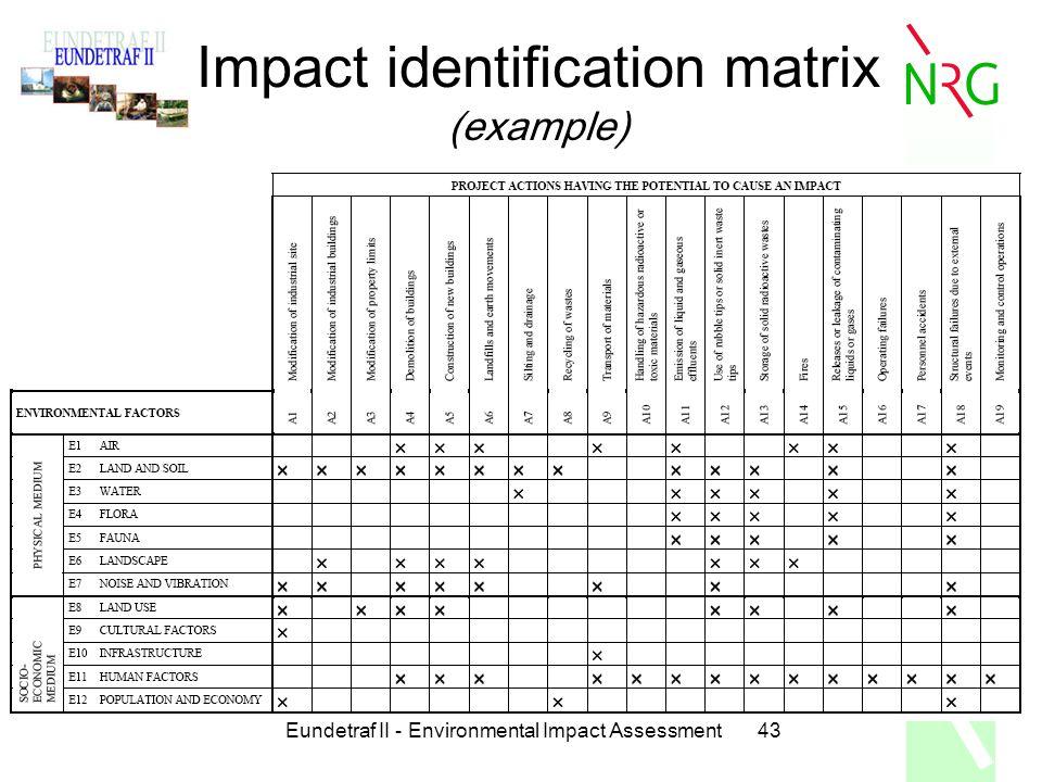 43 Impact Identification Matrix Example