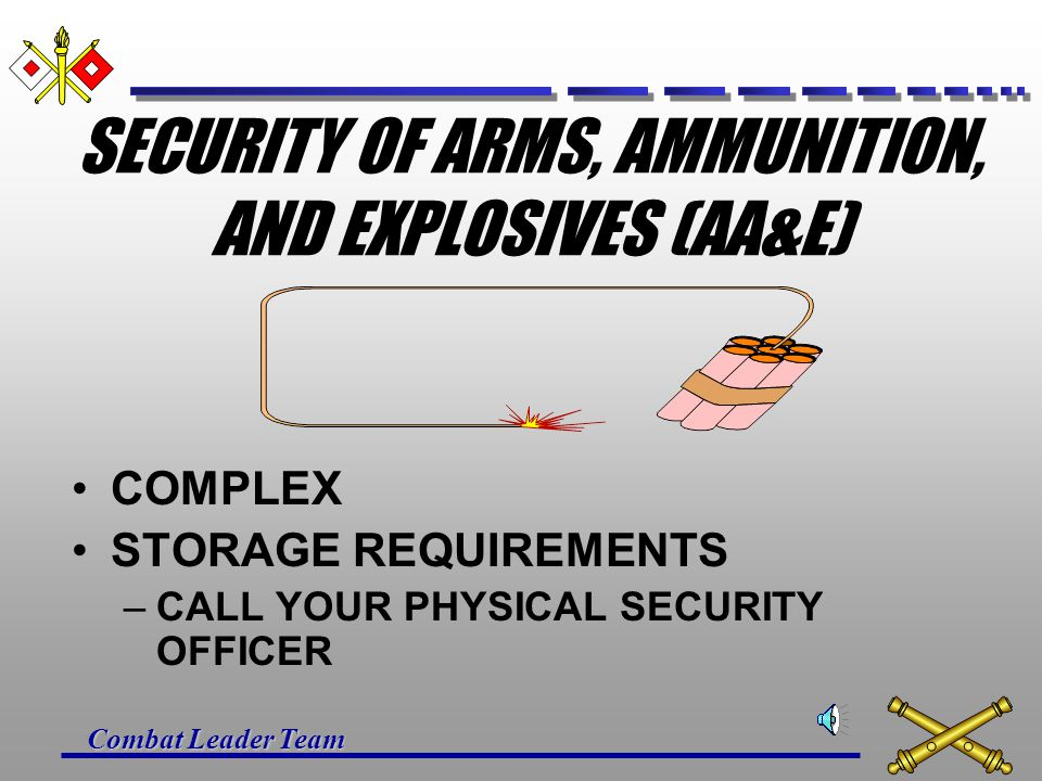 SECURITY OF ARMS, AMMUNITION, AND EXPLOSIVES (AA&E)