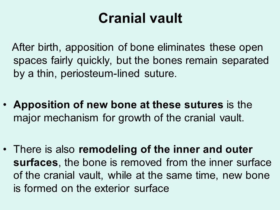 Growth Of The Craniofacial Skeleton Ppt Video Online Download Adjacent to this we found a zone of proliferation cell hypotrophy and cell degeneration. growth of the craniofacial skeleton
