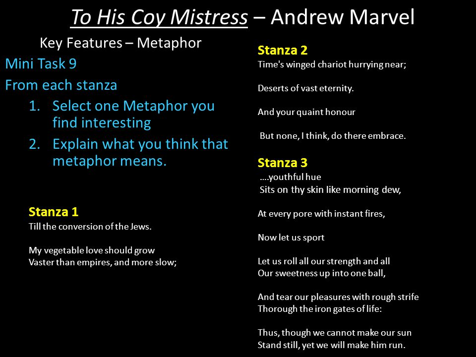 criticism of to his coy mistress