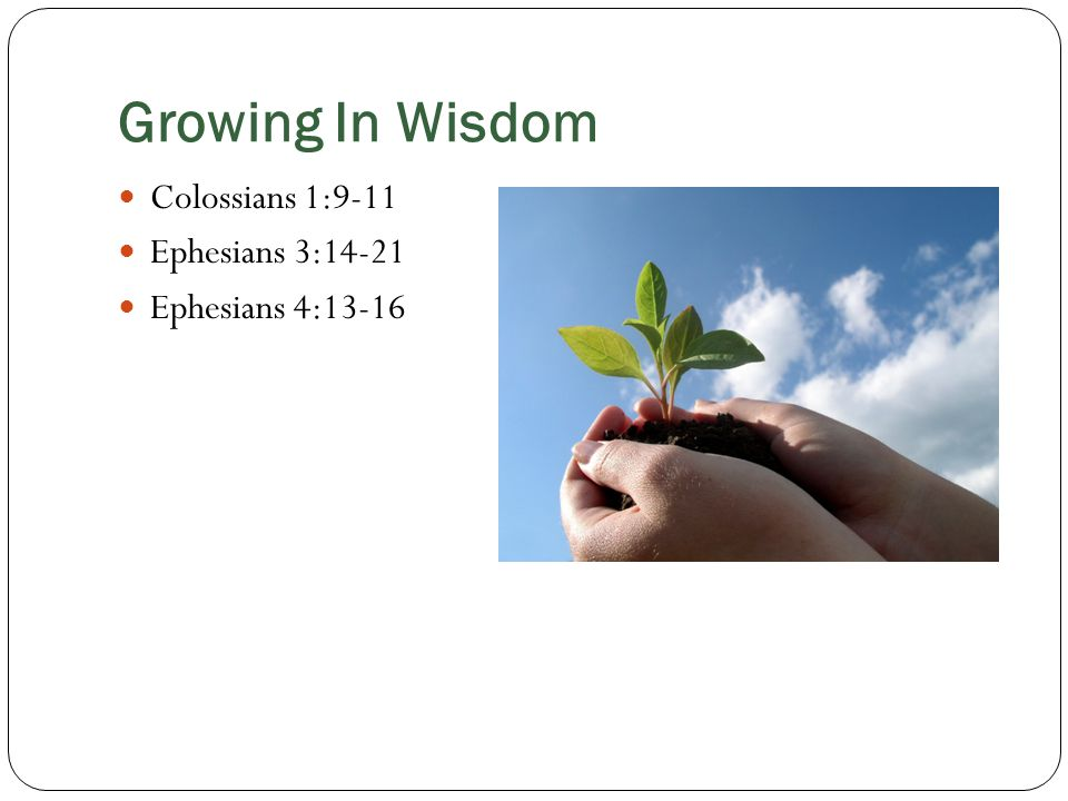 Growing In Wisdom Colossians 1:9-11 Ephesians 3:14-21