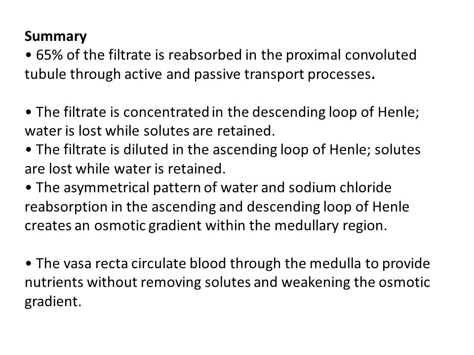 Summary • 65% of the filtrate is reabsorbed in the proximal convoluted tubule through active and passive transport processes.